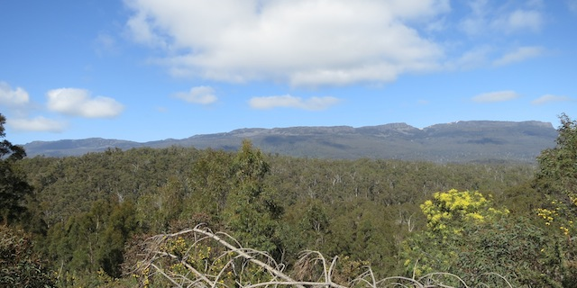 Distant forest and mountains seen from quarry
