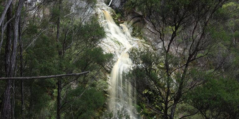 Photograph of waterfall seen through trees.
